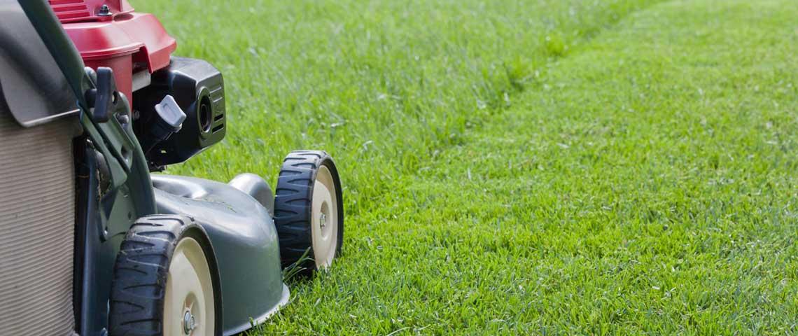 Winter Storage: Lawn Mower